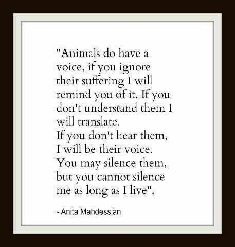 animals do have a voice